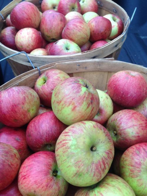 Apple Harvest.