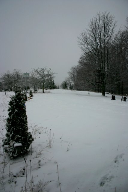 December 2010, monochromatic month
