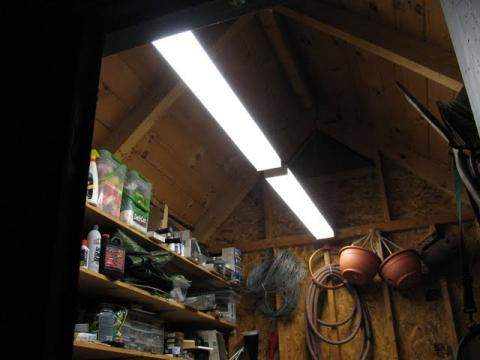 Newly installed overhead florescent light fixtures.