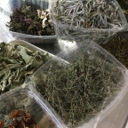New Crop of Dried Herbs
