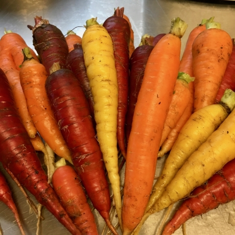 Oh so awesome carrots!