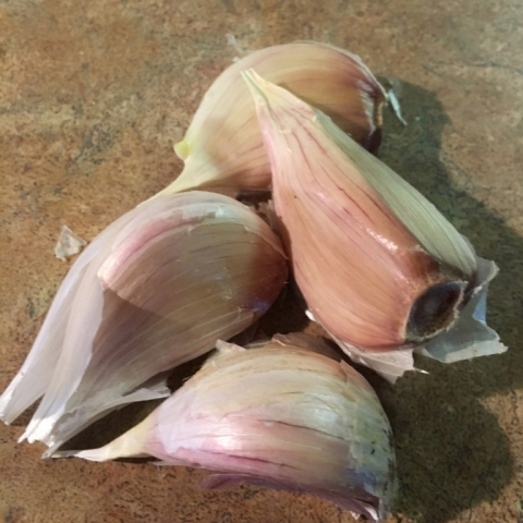 Yay! Garlic!