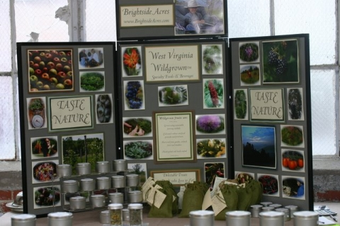 Berkeley Springs Display