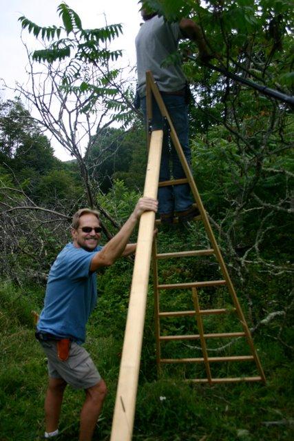 Harvesting in the Sumac Sanctuary