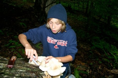 Jake harvests oyster mushrooms on a cool July day