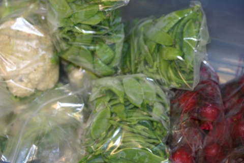 August 2 cauliflower, snow peas, and beets packaged for delivery.