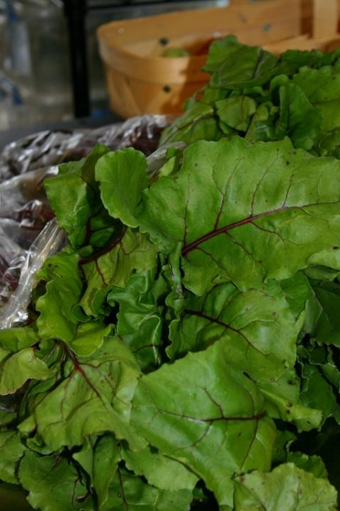 Chioggia beets prepared for a local restaurant.