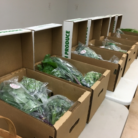 Produce on the Move! CSA boxes.