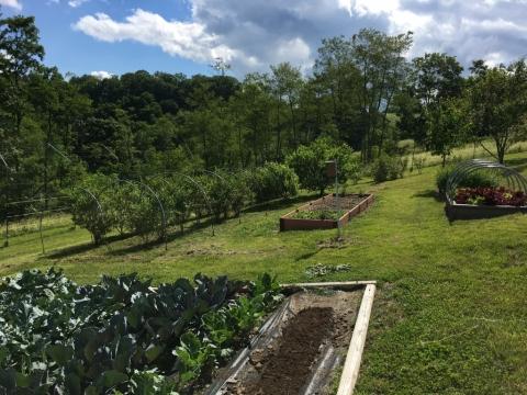 June 30. Brightside gardens.