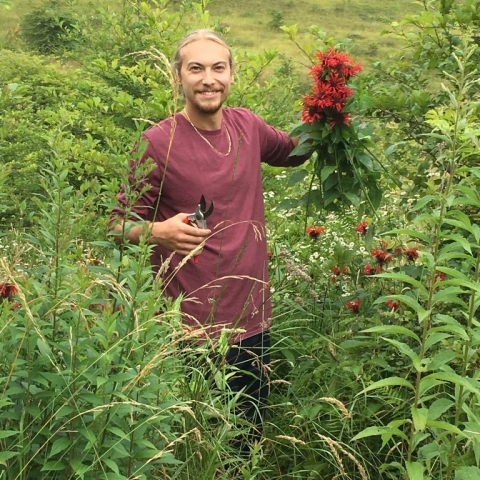 Jake cutting Bee Balm near Camp Allegheny.