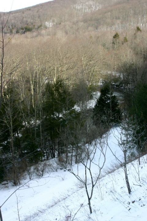 West Fork of the Greenbrier River from Forest Route (FR) 44, just above Durbin, in Pocahontas County, WV.
