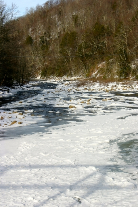Shavers Fork viewed from the bridge at Bemis.