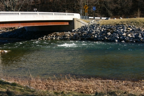 The Greenbrier River at Cass, January 20.