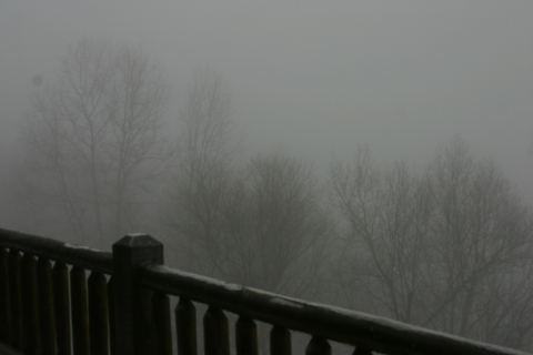 Icy fog, January 28.