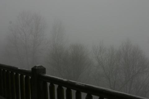 Icy fog, January 28.