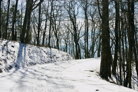 Old Pike Road. (aka My Driveway)